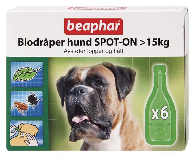 beaphar spot on hund mot insekter min beste venn. Black Bedroom Furniture Sets. Home Design Ideas