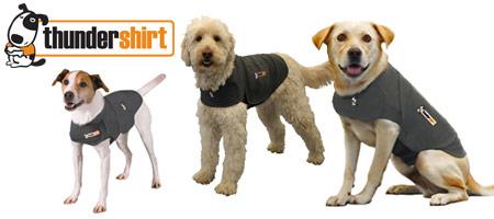 Thundershirt hundedekken reduserer stress