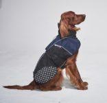Regndekken Beta Pro blue Non-Stop Dogwear