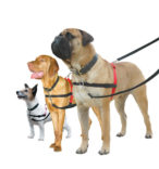 Halti antitrekk sele total kontroll hund