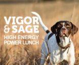 Våtfôr Vigor Sage høy energi